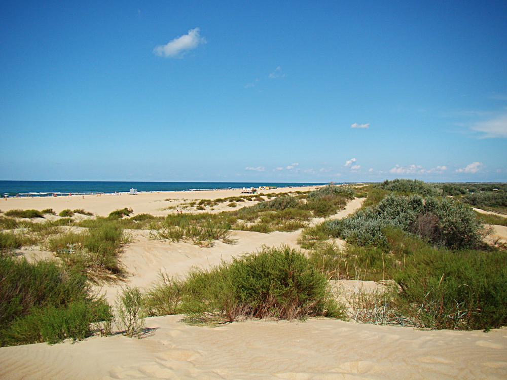 Dunes d'Anapa