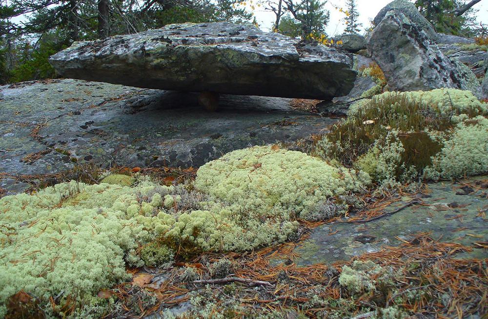 Alam liar Karelia.