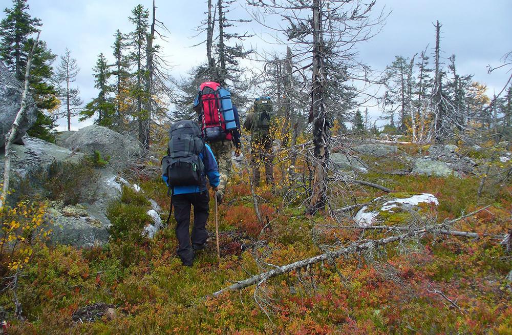 Latihan bertahan hidup di hutan Karelia.