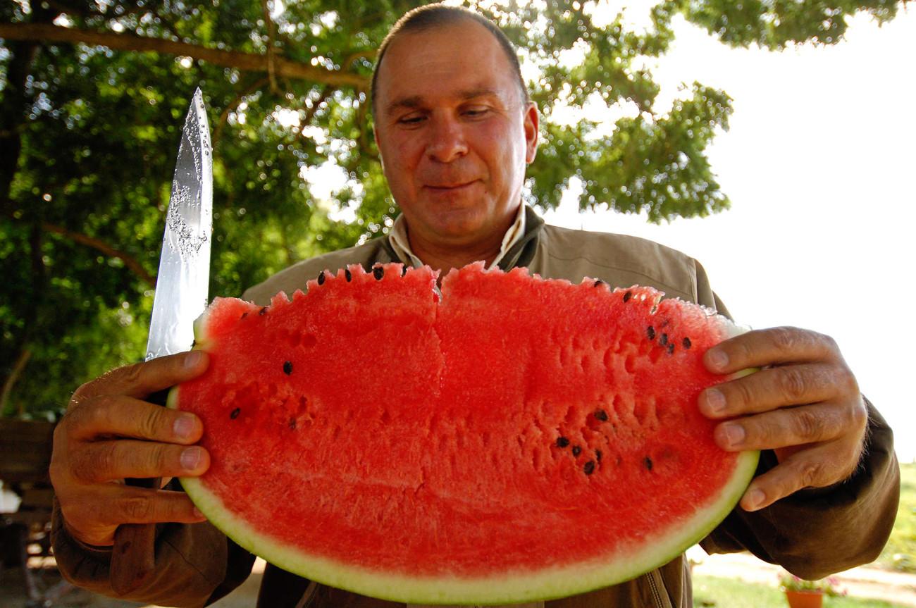 Meski musim semangka yang paling lezat baru dimulai pada awal Agustus, sebagian besar toko mulai menjualnya bahkan pada bulan Juli atau bahkan Juni.