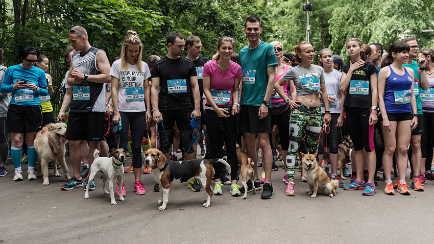 Run For Dogs marathon participants and their pets in Kuzminki Park, Moscow.