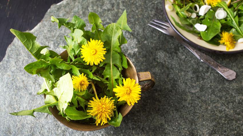 Vegetarian recipe: Dandelion salad for brutal men and slim women - Russia  Beyond