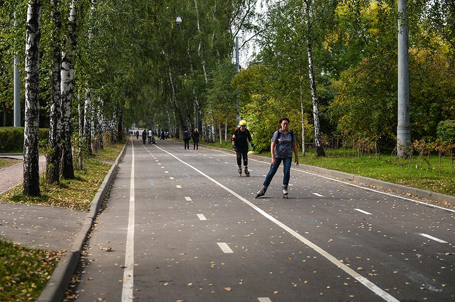 Park Sokolniki