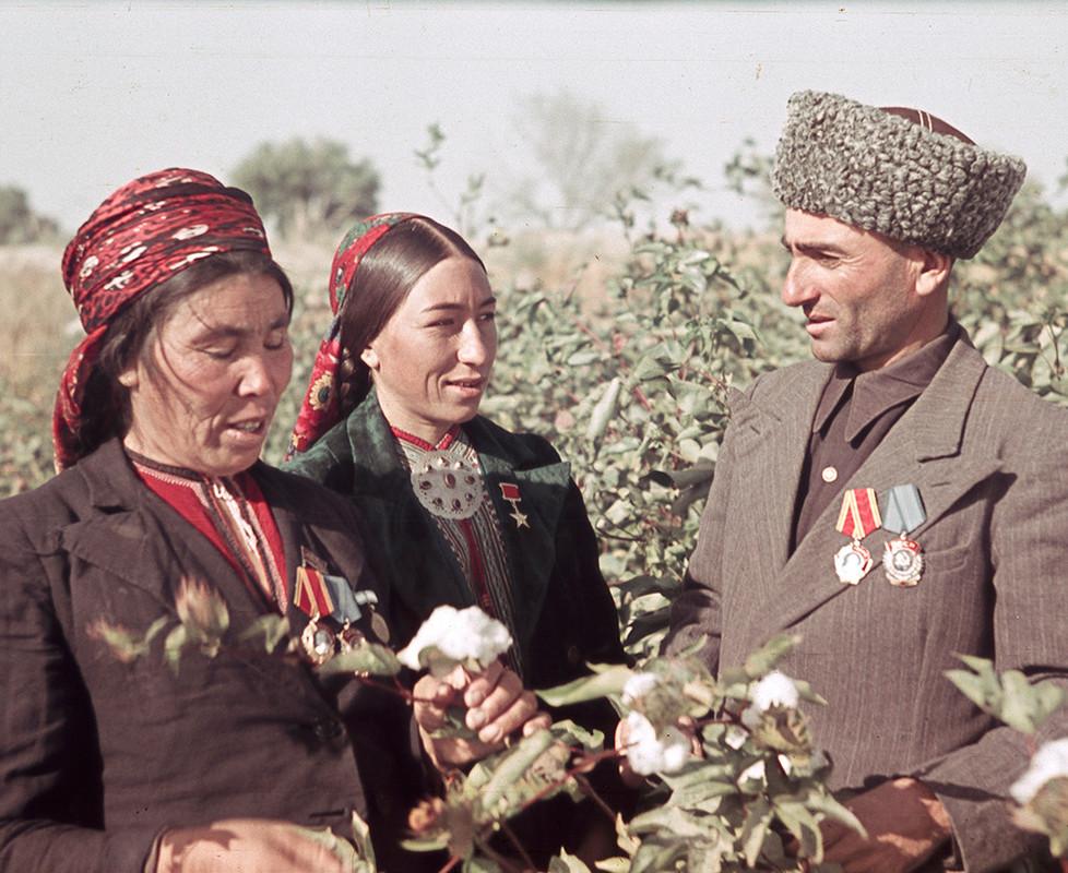 Direktor sovhoza med žetvijo bombaža v Tadžiški SSR