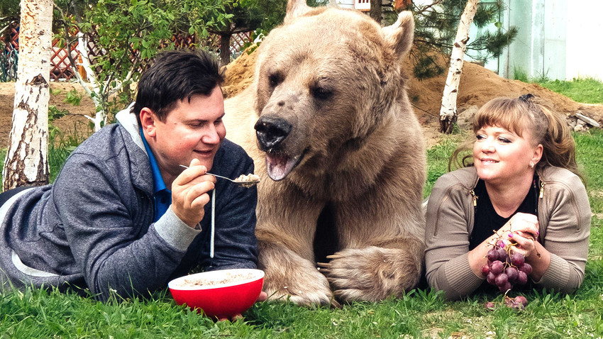 The most popular name for a bear is Misha