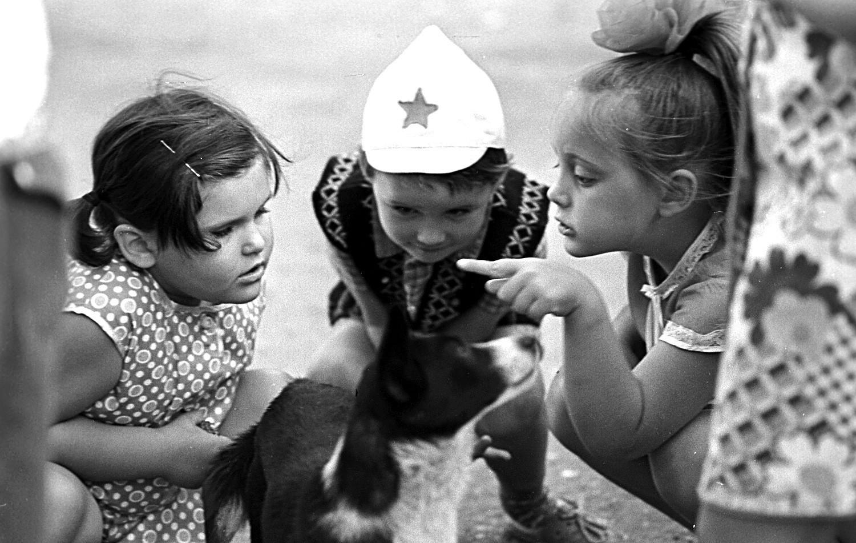 Crianças brincando com um cachorro na Crimeia.