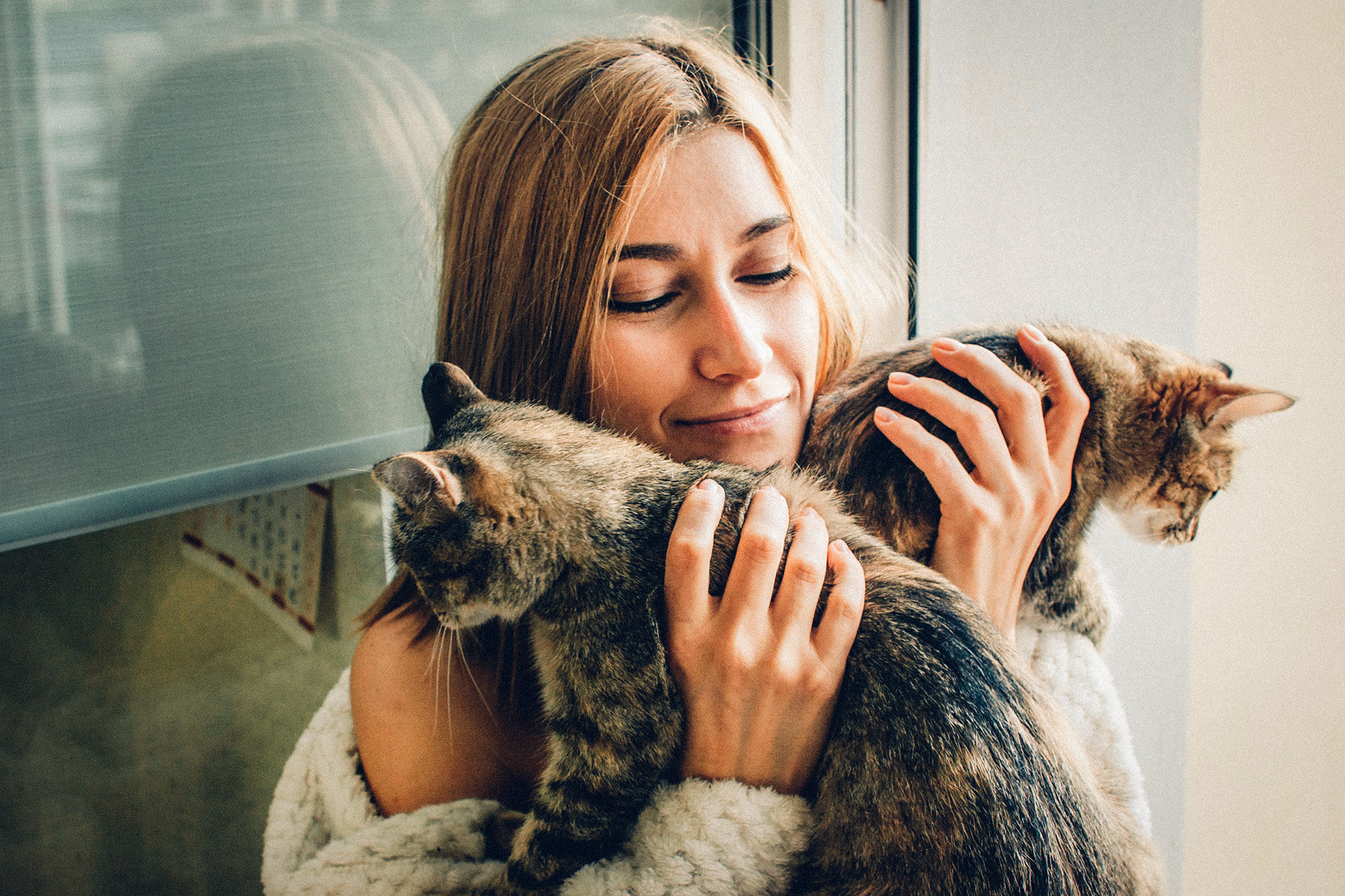 A seguinte imagem se tornou altamente popular no país: uma mulher que vive sozinha com muitos gatos (quanto mais gatos, mais a situação está fora do controle).