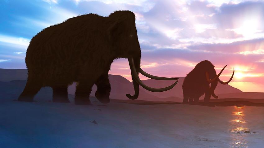 За изумирање на мамутите веројатно придонело извесно оштетување на нивната ДНК