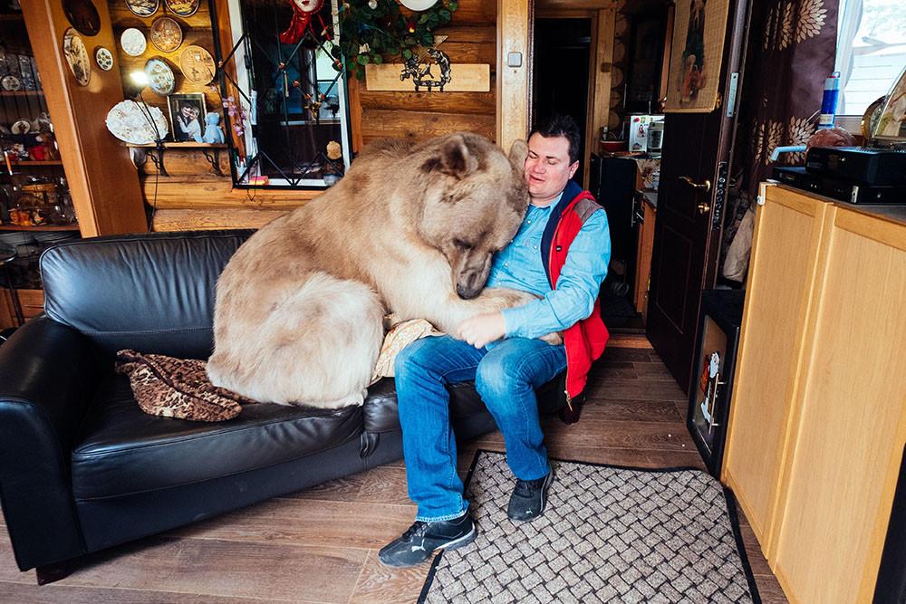 Beruang Stepan