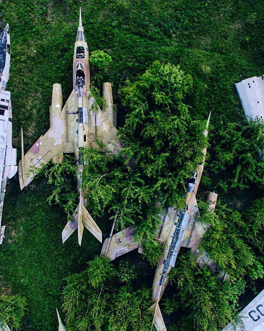カモフラージュ。モニノ空軍博物館の近く