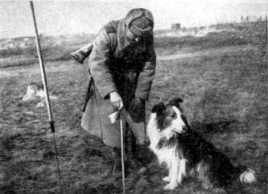 Dick realizó su mayor hazaña en el suburbio de Pávlovsk en Leningrado, detectando una mina terrestre mecánica de 2,5 toneladas una hora antes de que esta explotase.