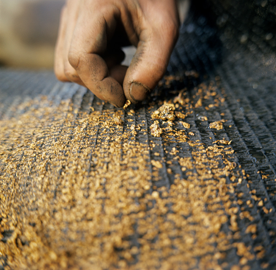 Gold dust on a flushing sluice special mat at Sputnik Prospectors' Cooperative. - - -
