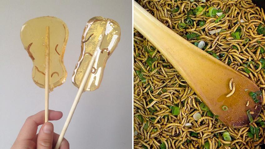'Es muy fácil convertirse en un feliz criador de gusanos'.