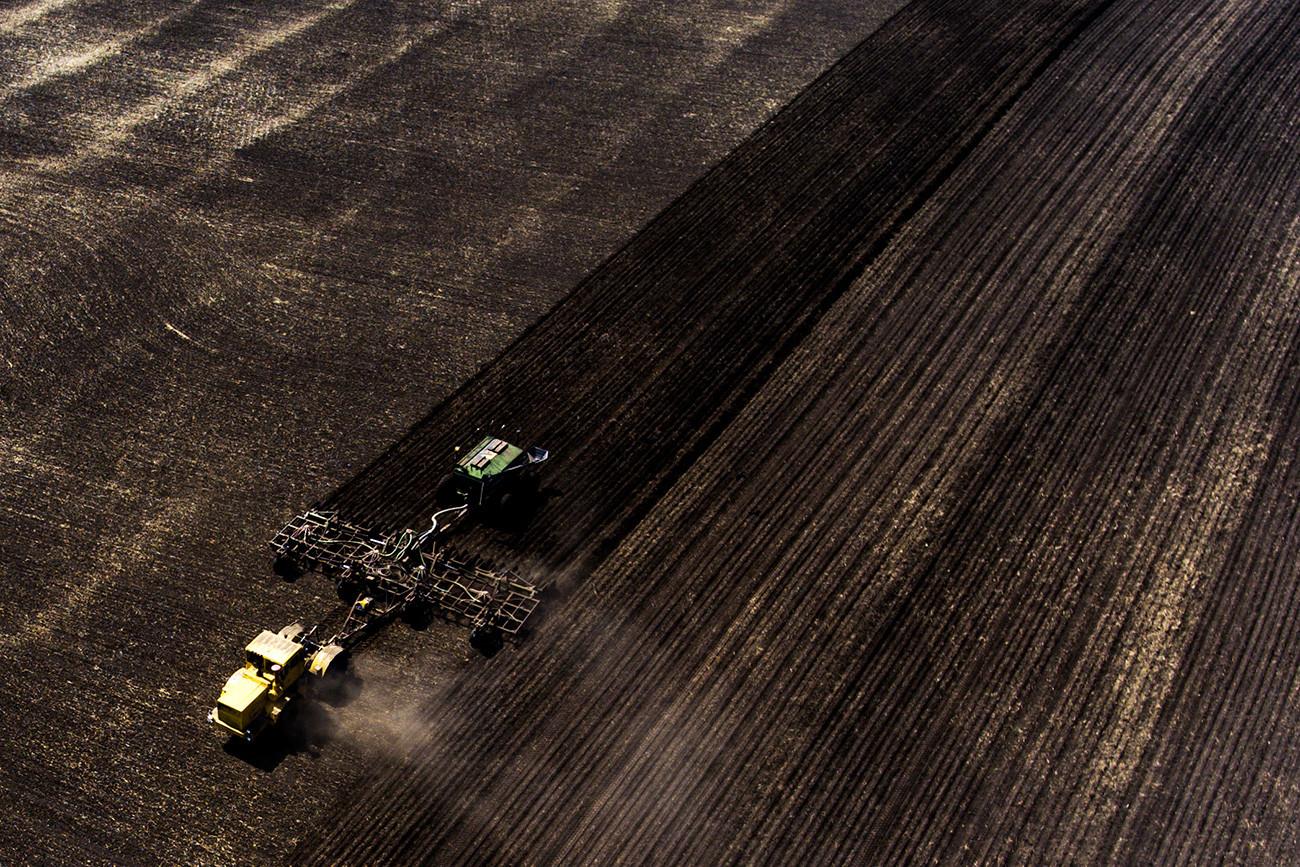 Menabur biji-bijian di ladang pertanian di Distrik Iskitim dari Oblast Novosibirsk.