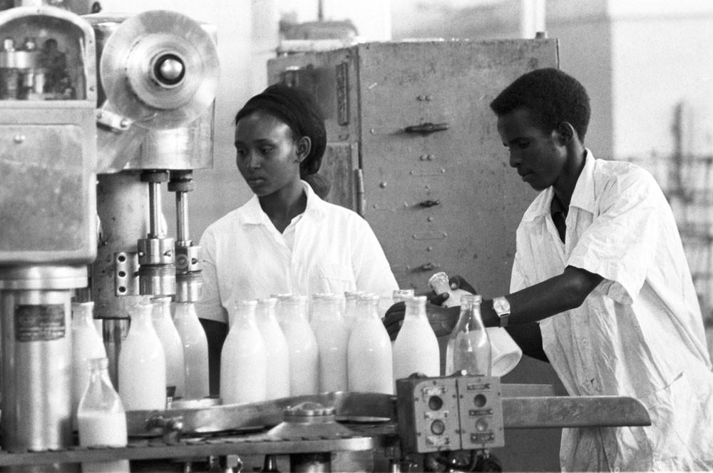 1974. Funcionários da fábrica de processamento de leite em Mogadíscio, na Somália. A planta local foi construída por engenheiros soviéticos