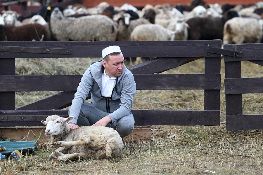 Seorang muslim menjaga hewan-hewan ternaknya yang dijual untuk Hari Raya Kurban.