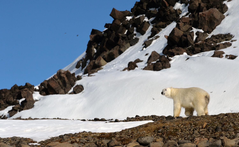 Semenanjung yang terletak di luar Lingkaran Arktik.