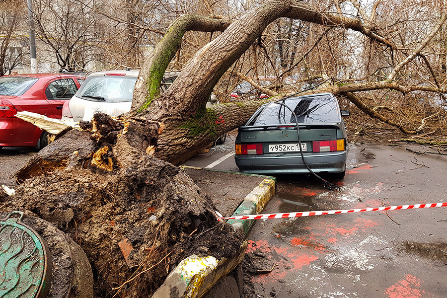 The consequences of the hurricane that hit Moscow in May 2017 and killed 18 people.