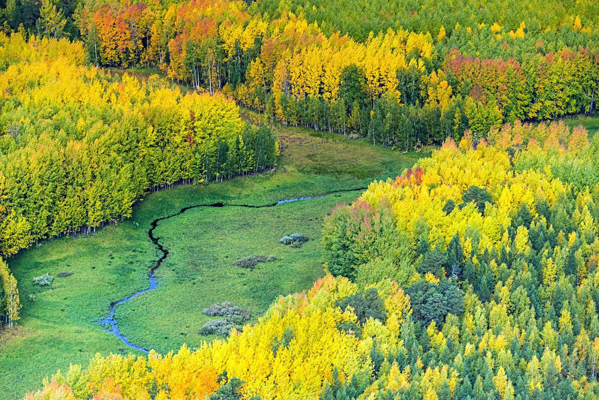 ロシア、ハンティ・マンシ自治管区、チュメニ州。上から見た秋のシベリアのタイガ。