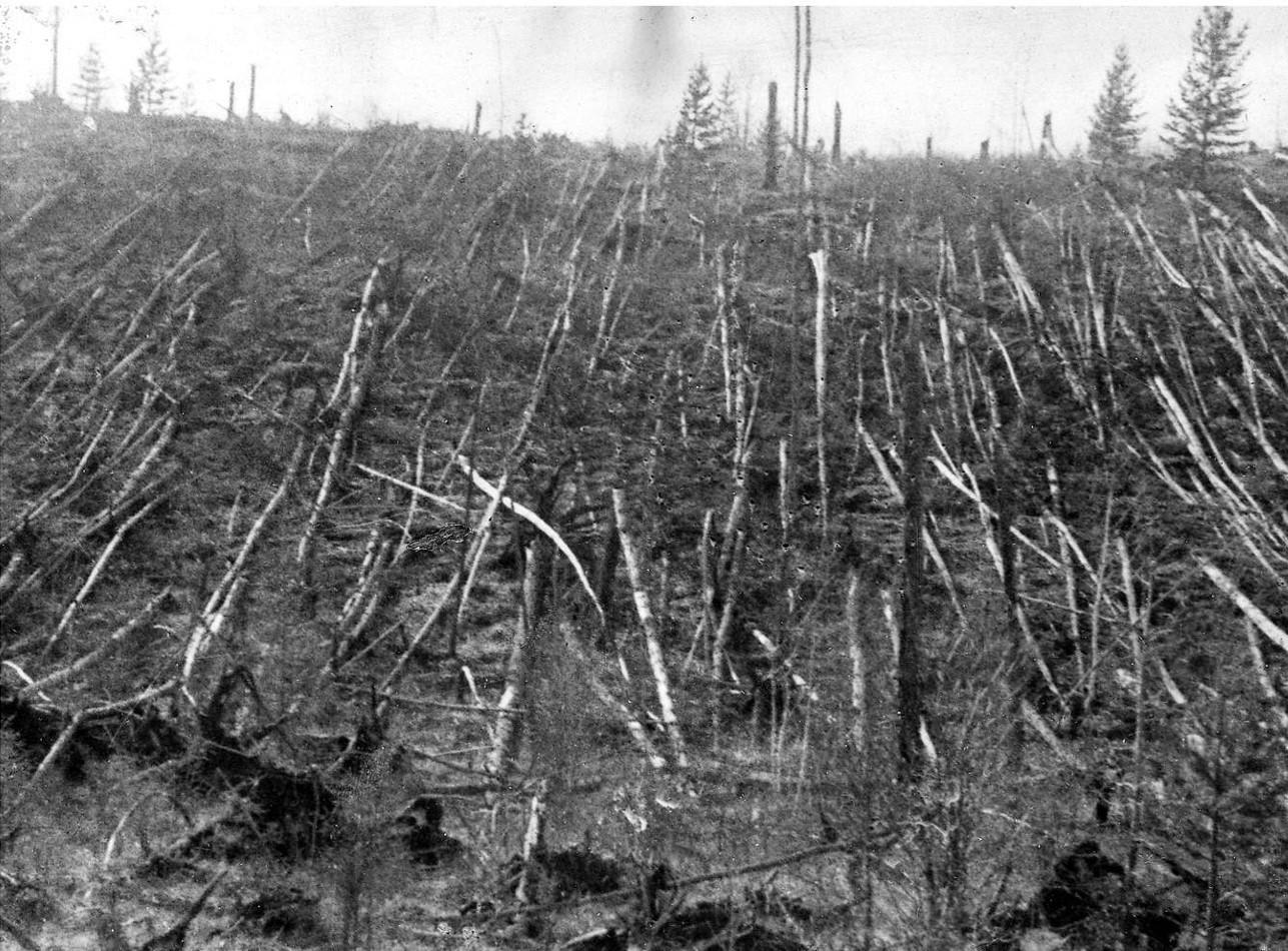 Поваленный лес в районе падения Тунгусского метеорита.