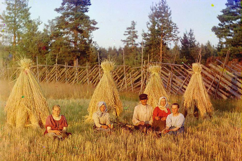 Época de colheita. 1909