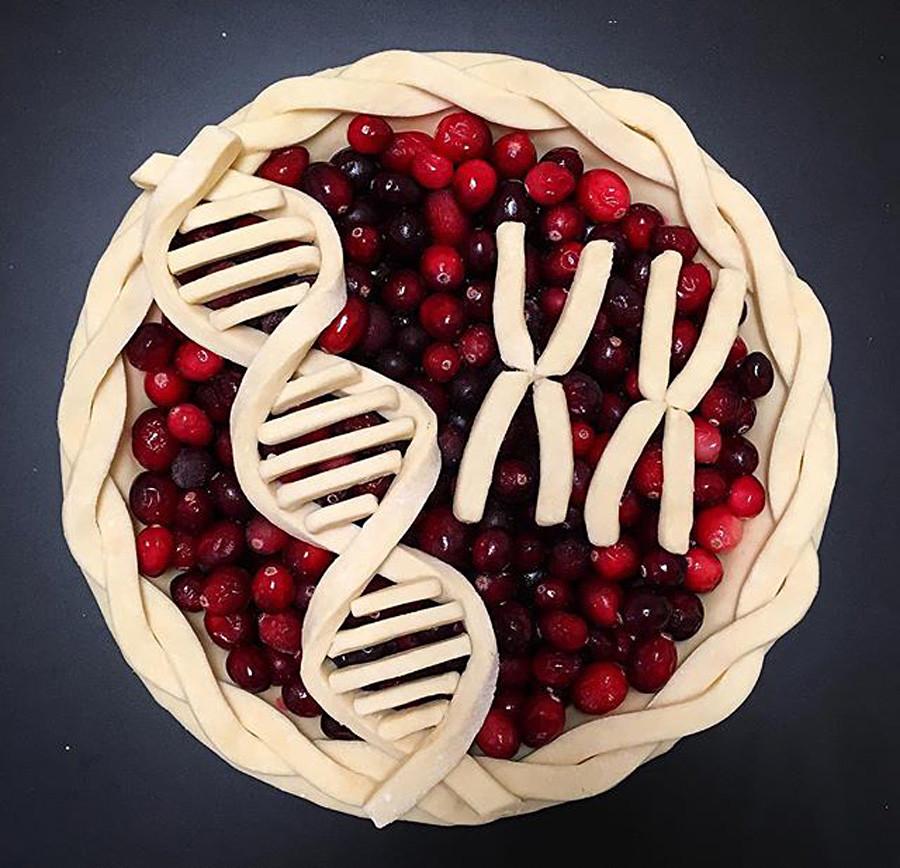 Para o dia 8 de março, Dia Internacional da Mulher, Elvira não quis colocar no bolo flores ou outros símbolos estereotipados tradicionalmente associados às mulheres; em vez disso, usou algo que todas as mulheres têm em comum – os cromossomos XX