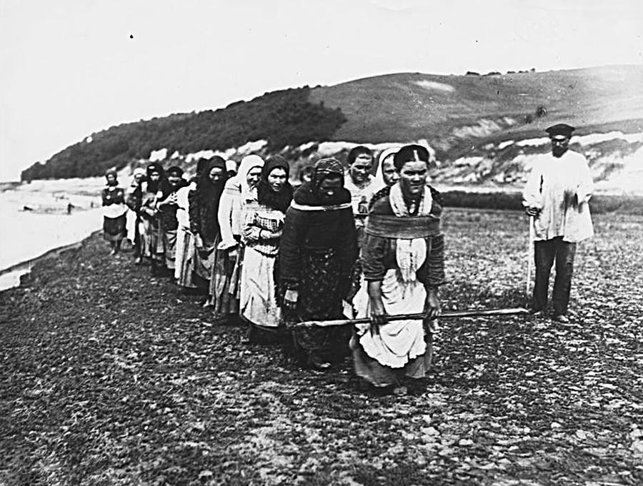 Жени-бурлаци теглят баржа на р. Сура, 1910