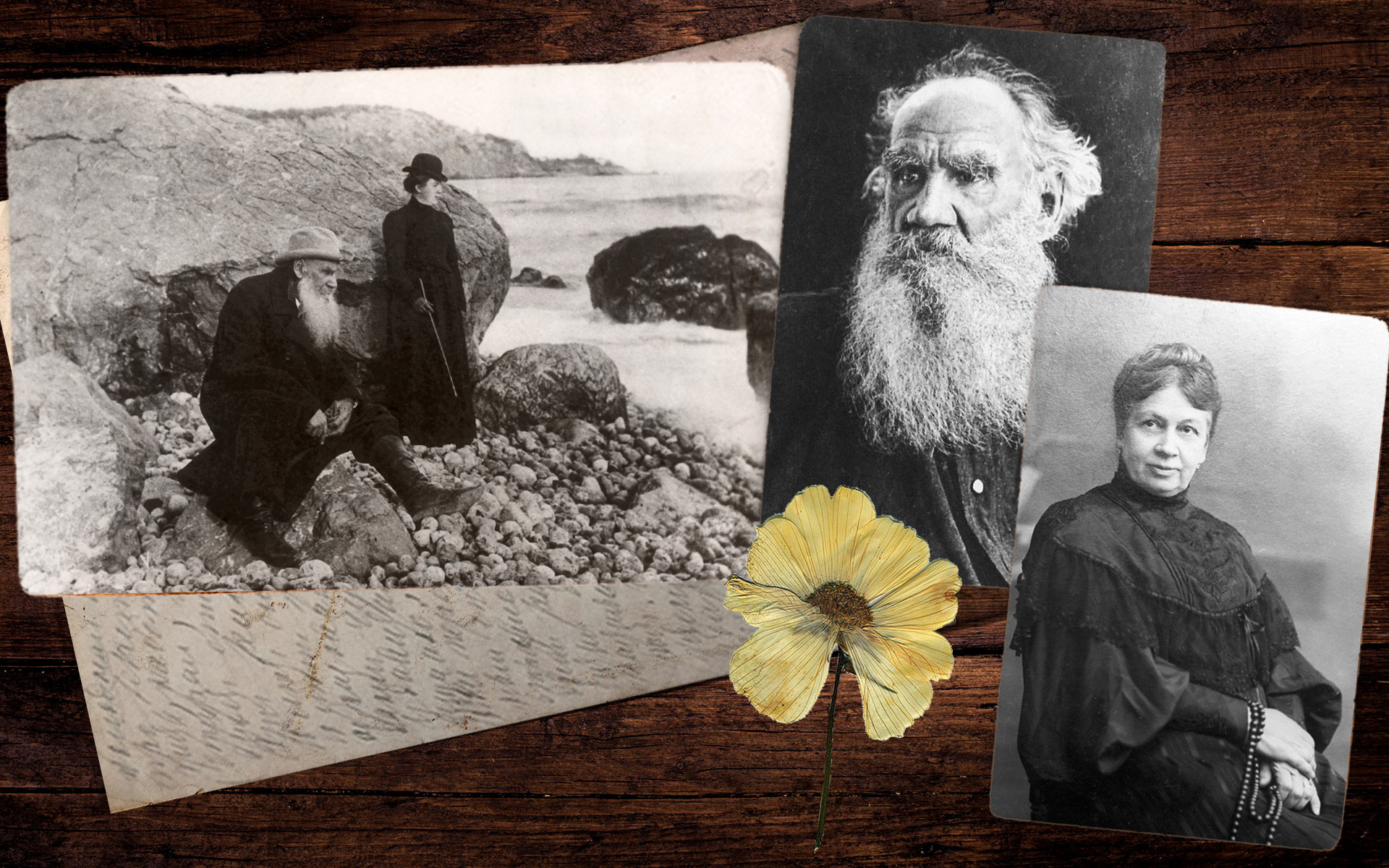 Лав Толстој со сопругата Софија на Крим, околу 1900 година; Софија Андреевна 1905.