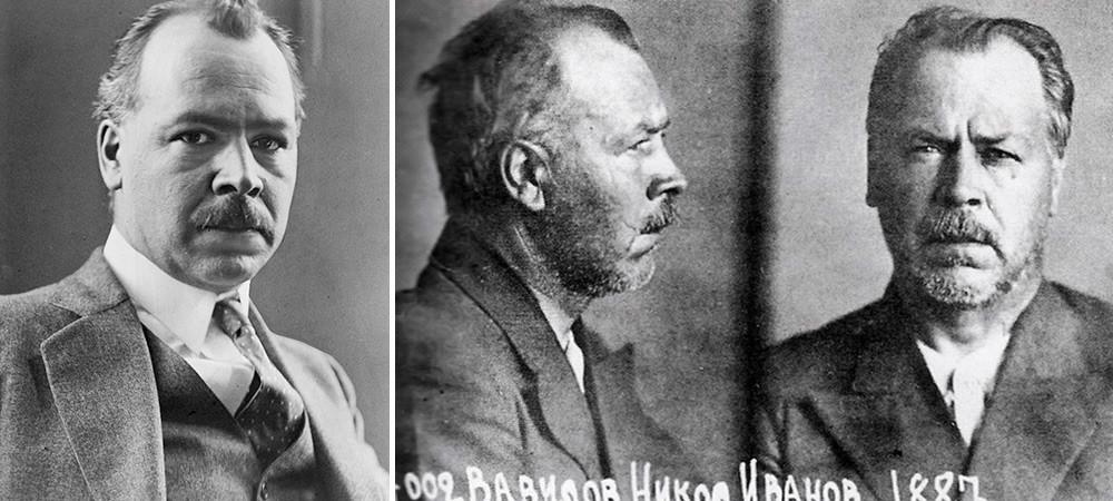 Zaporniška fotografija Nikolaja Vavilova iz leta 1933 (desno)