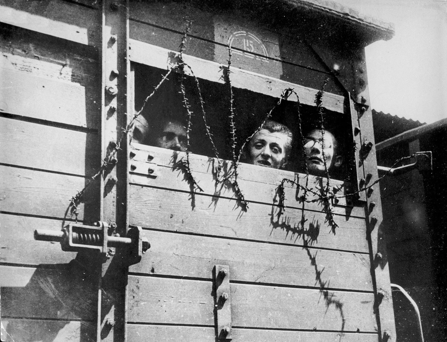 """Транспортировка в концентрационный лагерь в Польше. В отличие от """"пассажиров"""" этих вагонов, Бейрле сумел выжить и сражаться."""