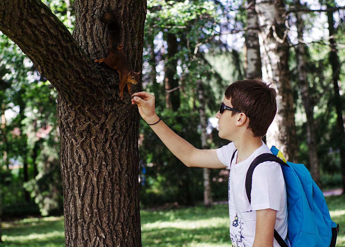 Дечак храни веверицу у парку-резервату Павловск близу Санкт Петербурга.