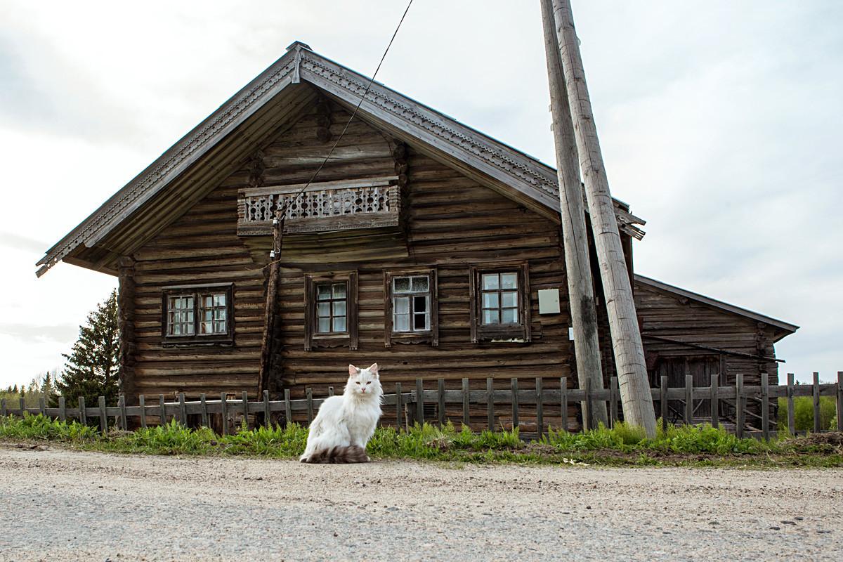 Kinerma, Rusija