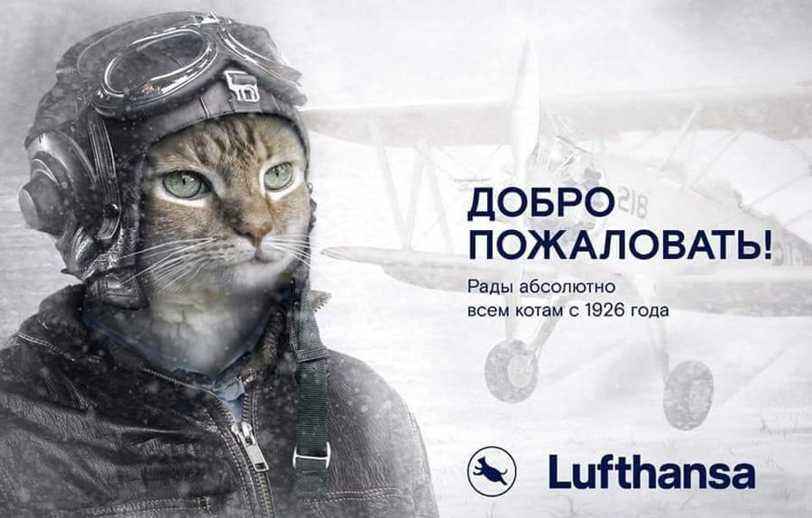 »Dobrodošli! Veseli smo prav vseh mačk že od leta 1926. – Lufthansa«