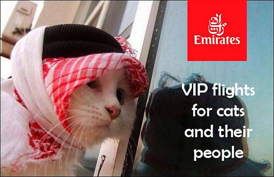 »Emirates - VIP poleti za mačke in njihove ljudi«
