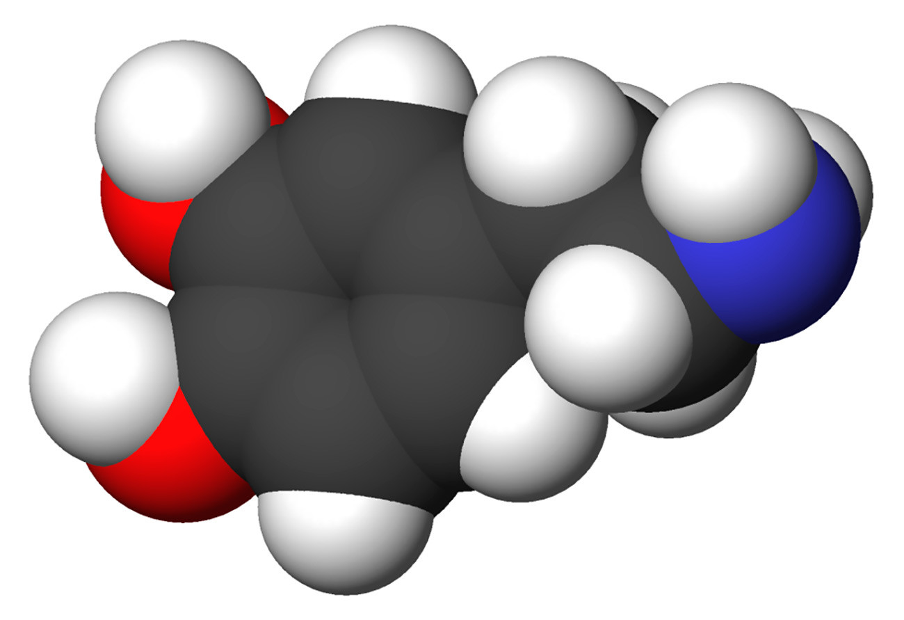 Space-filling model of the dopamine molecule, a neurotransmitter that affects the brain's reward and pleasure centers. Carbon - black, Hydrogen - white, Oxygen - red, Nitrogen - blue.