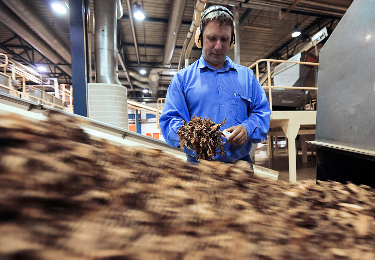 Линия обработки табака на фабрике «Филип Моррис Ижора»