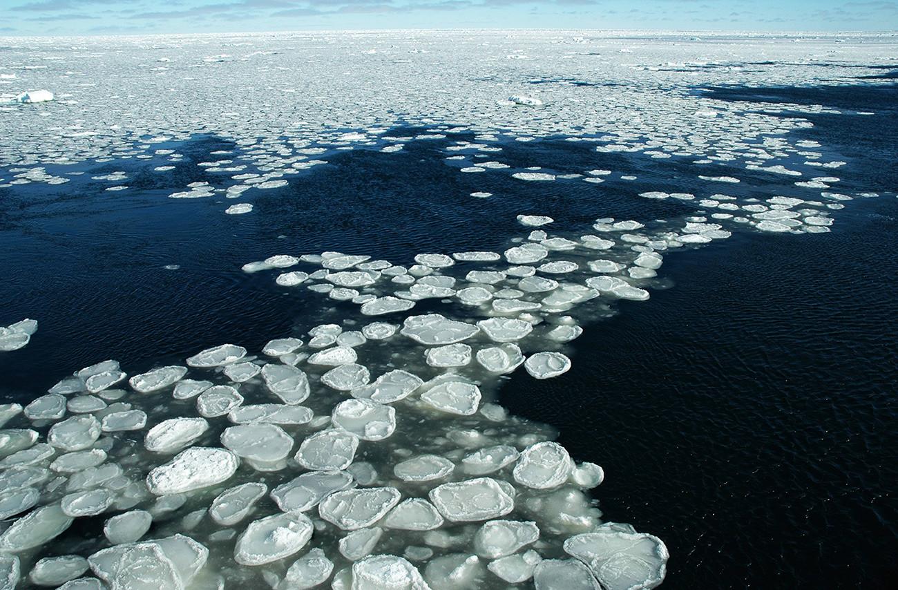 Блинчатый лед.