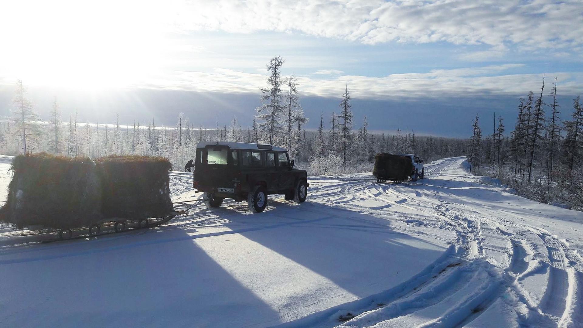 Meski dampak langsung perubahan iklim paling dirasakan oleh ekosistem padang rumput yang terletak di Kutub Utara, mengembalikan satwa liar di daerah lain pun tak kalah penting.