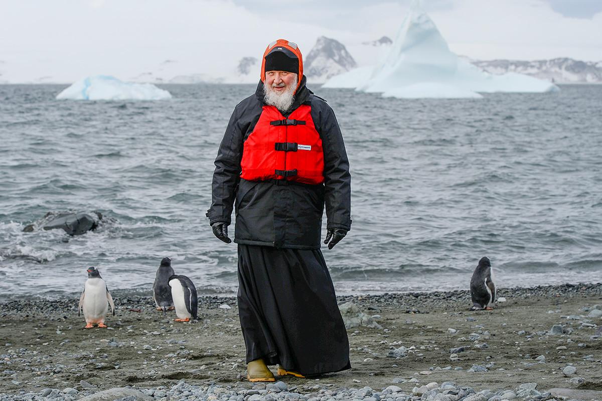 Патриарх Кирилл и пингвины.