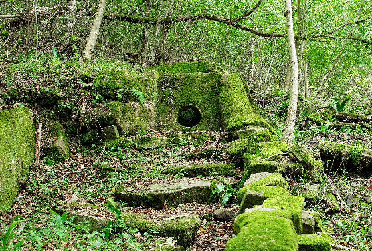 Dolmen du village de Bjef, près de Sotchi (région de Krasnodar)