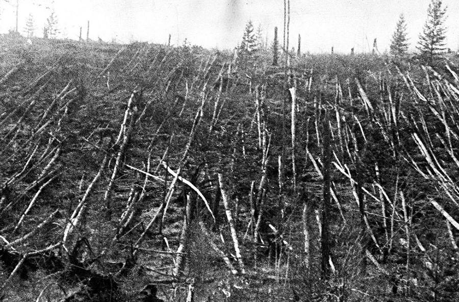 ツングースカ大爆発後の風景