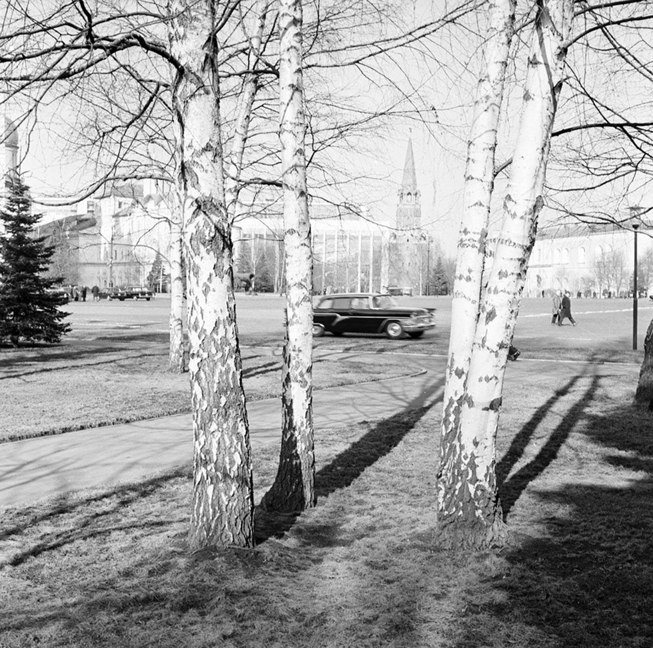 Spring in Kremlin, 1971