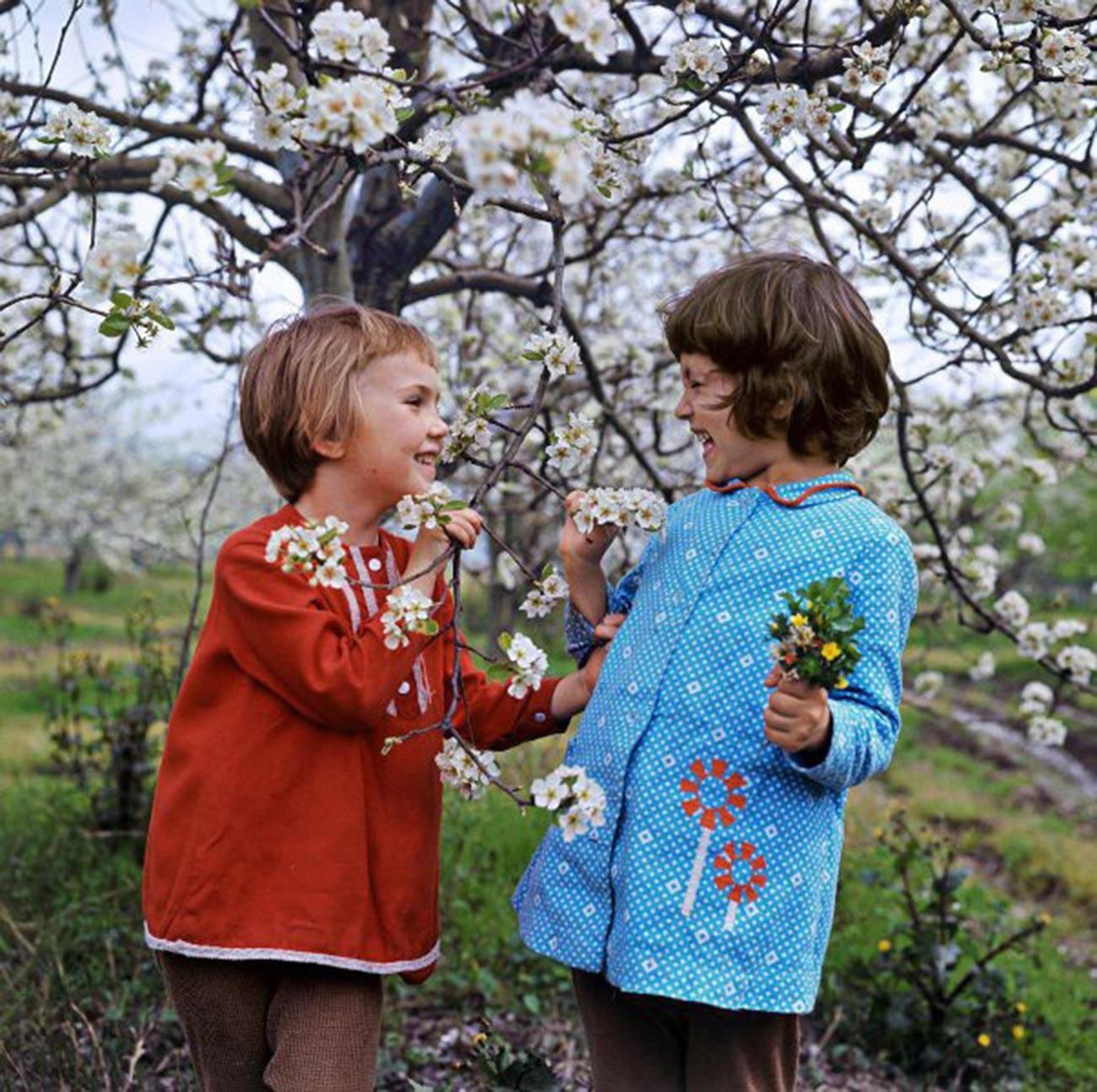 Spring conversation, 1971