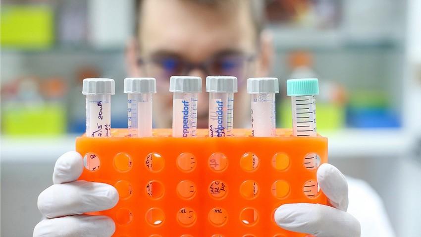 Um laboratório anunciou que testes com humanos devem se iniciar em junho.