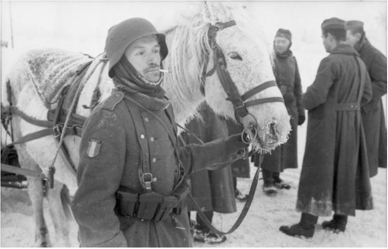 Vojak Francoske legije v Rusiji