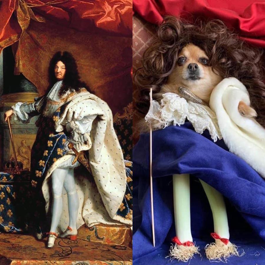 Хиацинт Риго, Людовик XIV