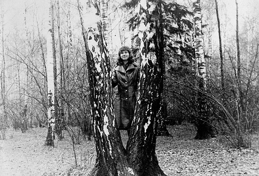 Di antara pohon birch.