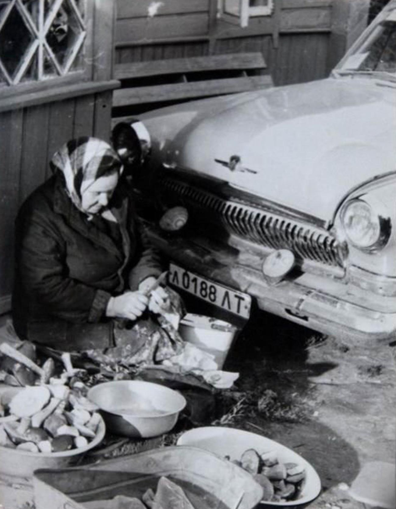 Une babouchka coupant des champignons qu'elle vient de cueillir