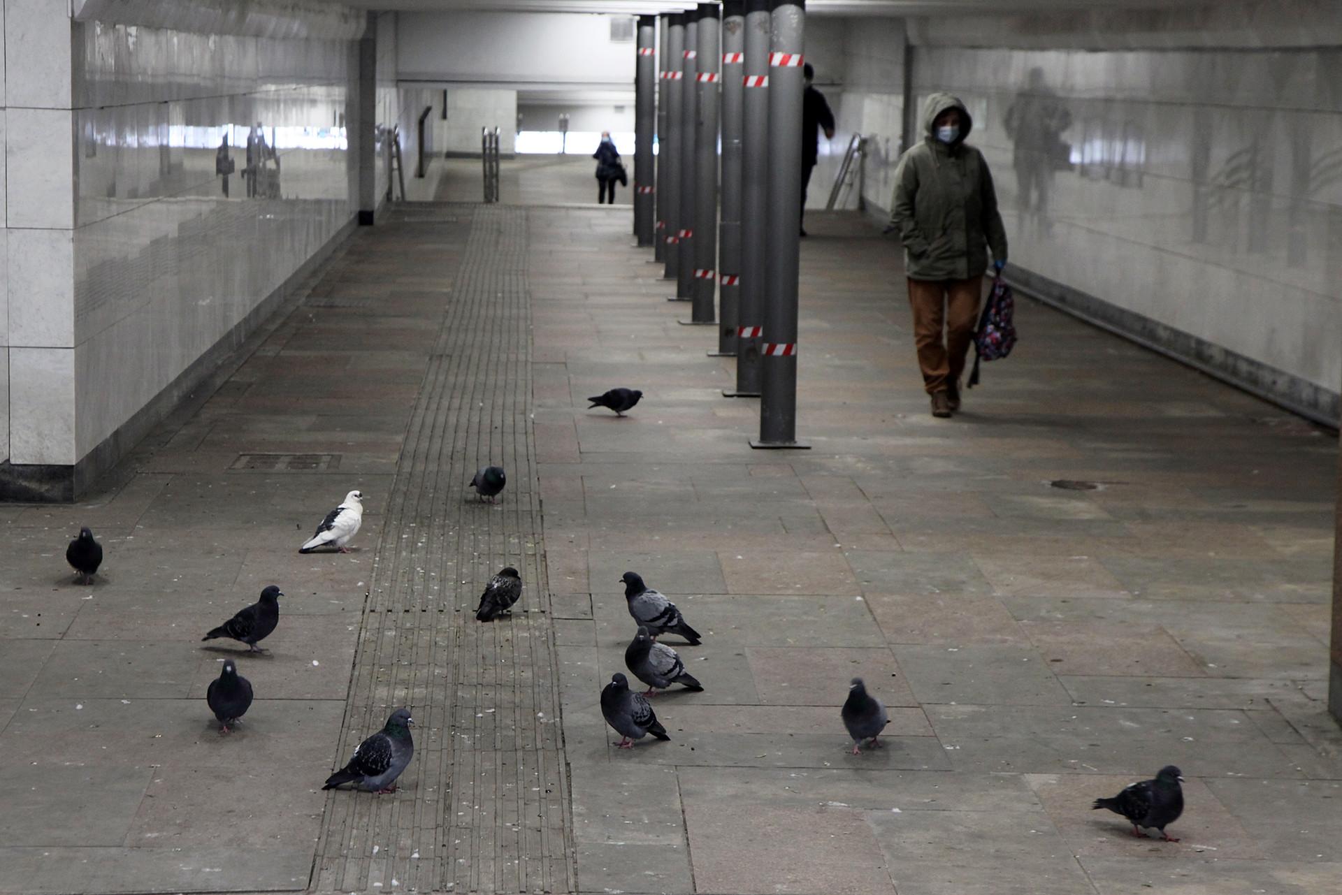 Suasana di terowongan penyeberangan dan akses ke Stasiun Metro Biblioteka Imeni Lenina yang sepi.