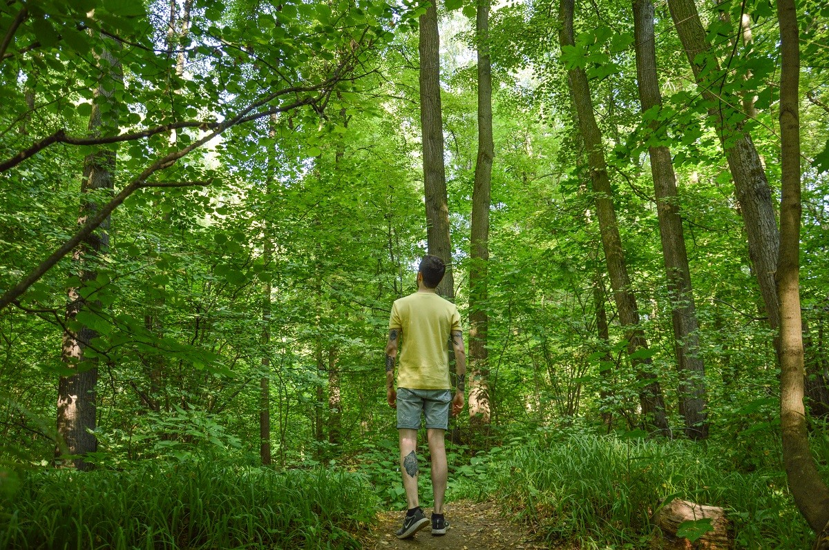 La forêt de Tsaritsyno, l'un de mes lieux favoris à Moscou